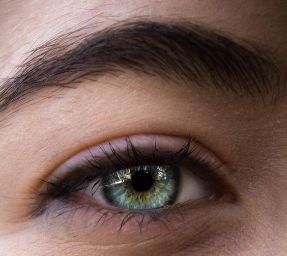 Closeup of a healthy eye
