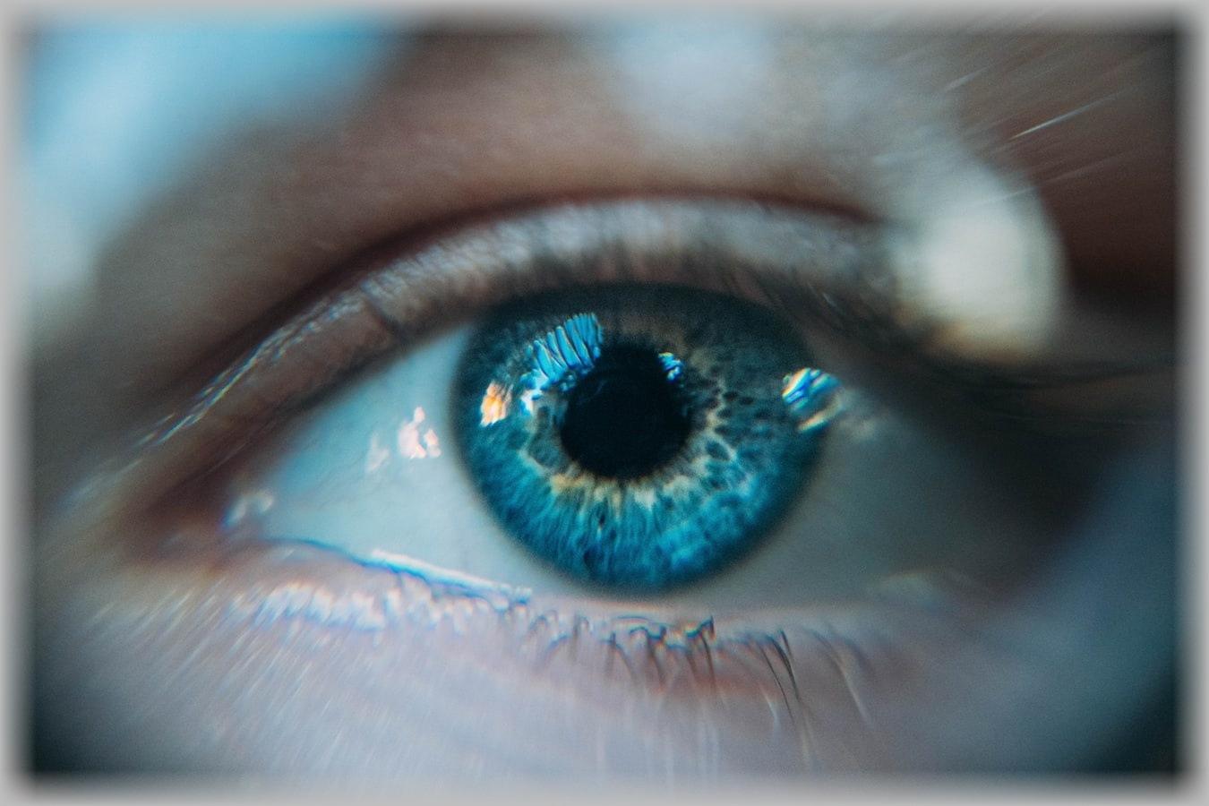Clear blue eye closeup